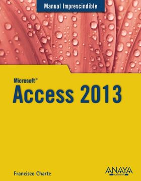 Access 2013 Manual imprescindible