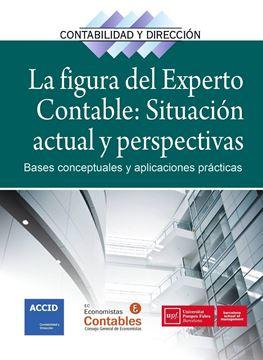 """La figura del experto contable: situación actual y perspectivas """"Bases conceptuales y aplicaciones prácticas"""""""