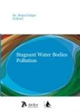 Stagnant Water Bodies Pollution