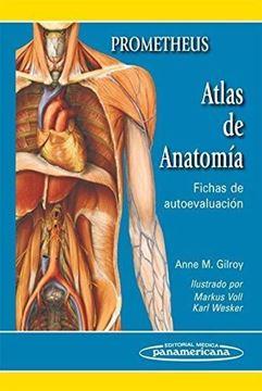 Imagen de Prometheus. Atlas de Anatomía. Fichas de Autoevaluación