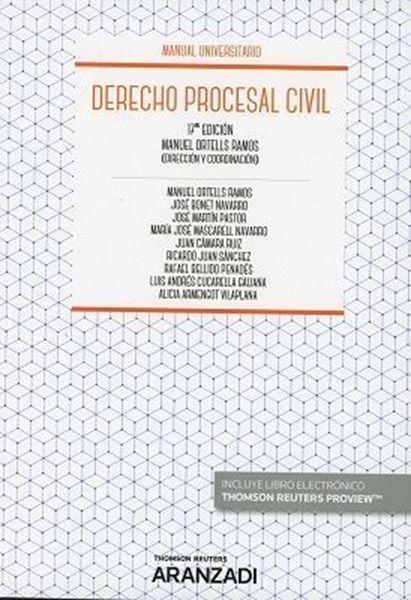 Imagen de Derecho procesal civil, 17ª 2018