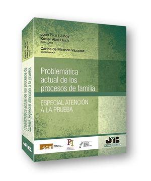 """Problemática actual de los procesos de familia, 2018 """"Especial atención a la prueba"""""""