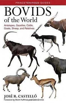 """Imagen de Bóvidos del mundo. Guía de campo, 2018 """"Antílopes, gacelas, toros, cabras, ovejas y otras especies"""""""