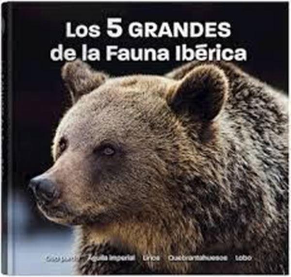 """Imagen de Los 5 GRANDES de la Fauna Ibérica """"Oso Pardo, Águila imperial, Lince, Quebrantahuesos, Lobo"""""""