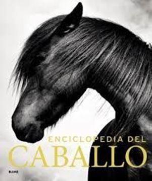 Imagen de Enciclopedia del caballo (2019)