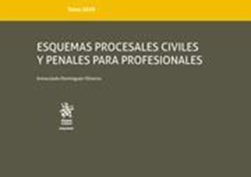 Imagen de Esquemas procesales civiles y penales para profesionales, 2019