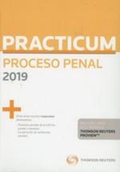 Practicum Proceso Penal 2019