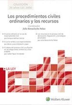 Los procedimientos civiles ordinarios y los recursos 4 Vols., 2019