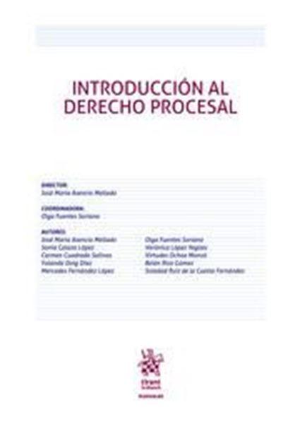 Imagen de Introducción al Derecho Procesal, ed. 2019