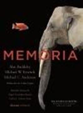"""Memoria """"Segunda edición, revisada y corregida 2020"""""""