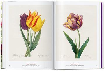 """The book of flowers. Pierre-Joseph Redouté. 40th Anniversary Edition """"Il libro dei fiori. El libro de las flores"""""""