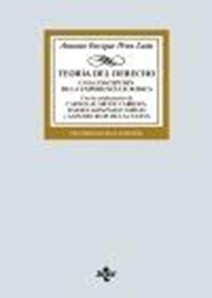 """Teoría del Derecho, 19ª ed, 2020 """"Una concepción de la experiencia jurídica"""""""