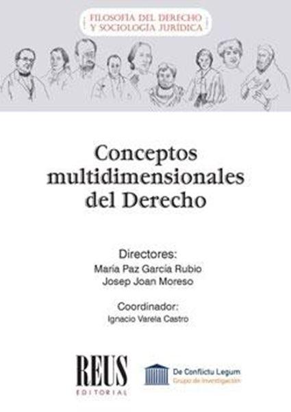Conceptos multidimensionales del Derecho, 2020