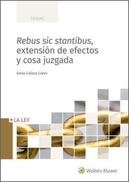 Rebus sic stantibus, extensión de efectos y cosa juzgada, 2021