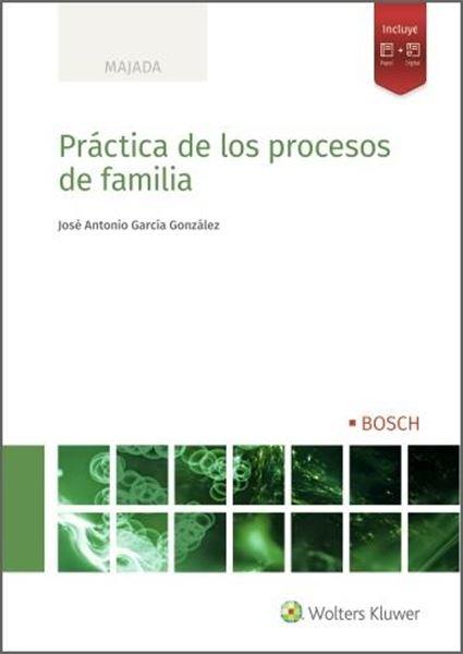 Práctica de los procesos de familia, 2021