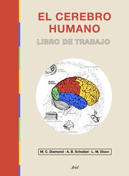 """El cerebro humano """"Libro de trabajo"""""""